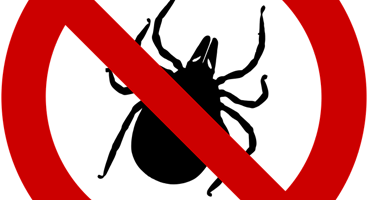 How To Prevent Ticks In NJ