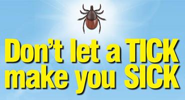 Tick Season Awareness