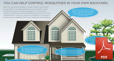 How To Prevent Mosquitoes Around Your Home