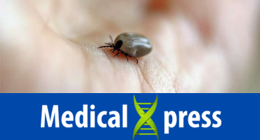 Lyme disease predicted to rise in United States as climate warms