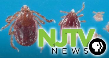 NJ and US Uptick in Lyme Disease