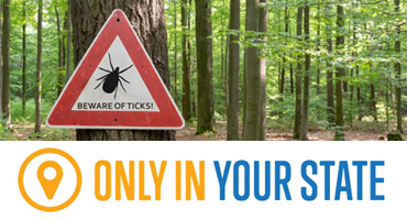 Experts Predict That The Tick Population In New Jersey Will Be Extremely High This Year