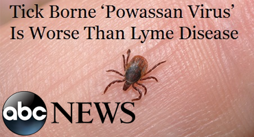 Rare, Deadly Tick-borne Disease Powassan Found in PA And NJ