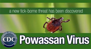 About The Powassan Virus