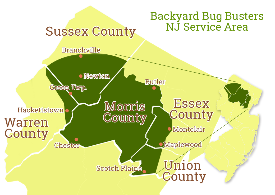 Northern New Jersey Tick and Mosquito Control