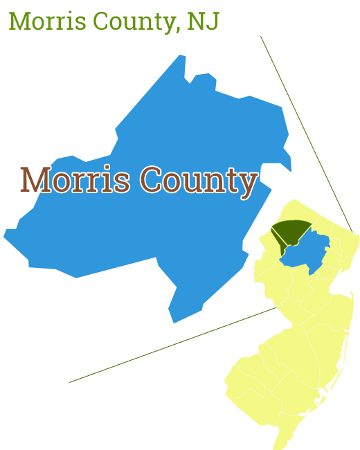 Morris County New Jersey Tick and Mosquito Control
